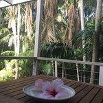 Foto de Arajilla Retreat - Lord Howe Island