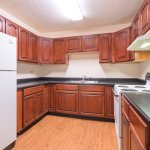 Kitchen for the Efficiency Apartment