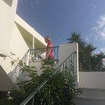 Photo de Aris Hotel