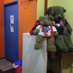 Photo of Beary Best! by a Beary Good Hostel!