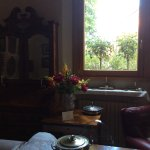 The drawing  room  front window. White roses in full bloom