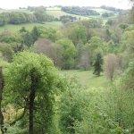 View across the surrey hills