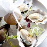 Menu item - Oysters