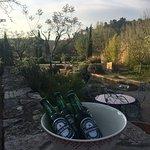 Photo de Une Campagne en Provence