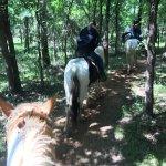Intermediate-level trail ride through the woods