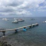 The pier, marina