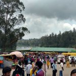 Market at Lake