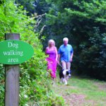 Dogs are welcome at Churchwood Valley, they even have their own walking area!