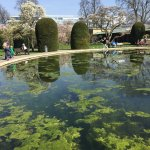 Wilhelma Zoologisch-Botanischer Garten Foto