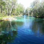Foto di Three Sisters Springs