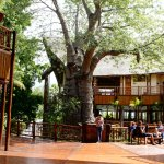 Photo of Cresta Mowana Safari Resort and Spa