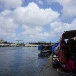 Punda Photo