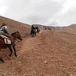 Gracias Amador, caballo fiel y compañero de expedicion