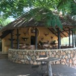 Photo de Motswari Private Game Reserve