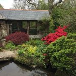 Docton Mill Gardens & Tea Rooms