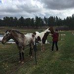 Foto de High Country Guest Ranch