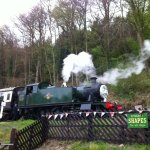 Steam train on site taking trippers alone the track.