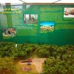 Photo of Algonquin Visitor Centre