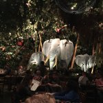 Rainforest Cafe Foto