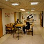 Photo de Hostel Domus Academica