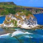 Photo of Bird Island