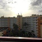 Photo of Corona Blanca