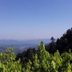Tianmu Mountain - Lions Mouth View