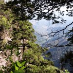 Tianmu Mountain - Overlooking View