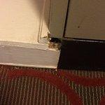 I'm praying mice don't live here