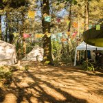 Handcrafted bushcraft and wild camp in Cornwall