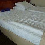 Foto di Hotel Olympia