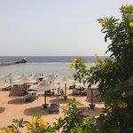 Foto de Rehana Royal Beach Resort & Spa