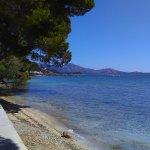 The Pine Walk Puerto Pollensa