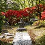 Foto de Katsura Imperial Villa