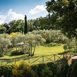 Photo of Il Borghetto di San Gimignano Agriturismo