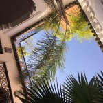 Photo de Riad Anya