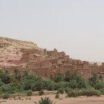 Photo de Camel Trekking Bivouac