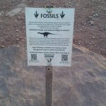 A dinosaur fossil sign on the trail