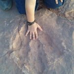 One of the dinosaur foot prints