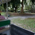 Start your visit with a pleasant ride on the Tram.