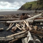 beach at low tide Cape Disappointment April 2017