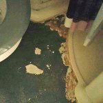 The disgusting floor in my son's pod bathroom