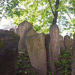 Photo of Old Jewish Cemetery