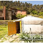 la yourte jaune / the yellow yurt