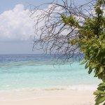 Photo de Maldive Due Palme