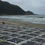 Photo of Guaiuba beach