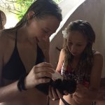Your young guests enjoy bottle feeding Katana's new rescue, an orphaned LUWAK named Moley.