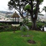 garden overlooking Funchal