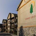 Photo de Pine Lodge