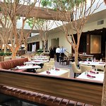 The all new Jacks restaurant now has atrium seating among the trees! So cool and gorgeous at nig